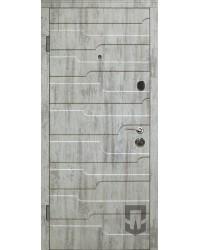 Двери Патриот Степ